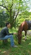 乗馬とは心理学