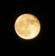 不知夜月の闇