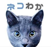 ネコでもわかる暗号通貨