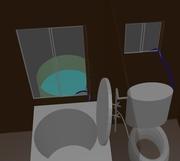 トイレは洗濯機の水で流せるよ