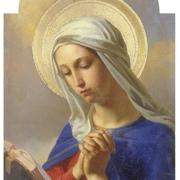 聖母奉献のアーカイブ
