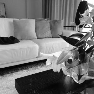 interior life style