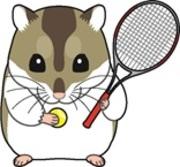 ヤミ鍋のテニスブログ