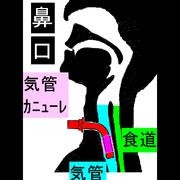 難病で寝た切りでもPCがあれば何でもできる!!by上虎【筋ジス人工呼吸器ユーザー】