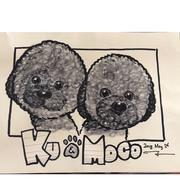 黒プー Ku & Moco
