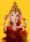 インド占星術の仕事・職業