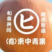 日本が誇る淡路島の玉ねぎブログ