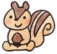 chiroruさんのプロフィール