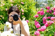 ebay輸出とカメラ転売が最高に効率いいよ〜♪