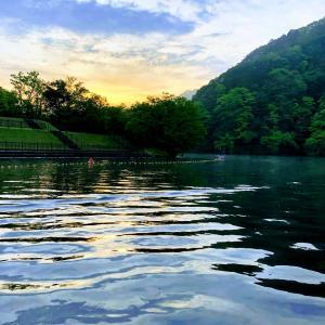 房総ダム湖の旅人