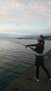 タケと金魚と釣り日記