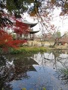 kyotodezのブログ