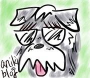 anikiさんのプロフィール