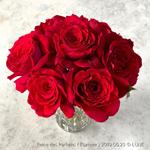 香りのバラの栽培レビュー