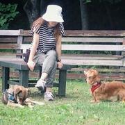 犬も毎日 〜犬のためにできること〜