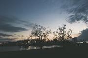 散歩ブログ「多摩川と空」