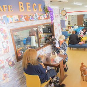 cafe-beck