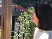 ココロに創造の羽を~香り空間CWS~