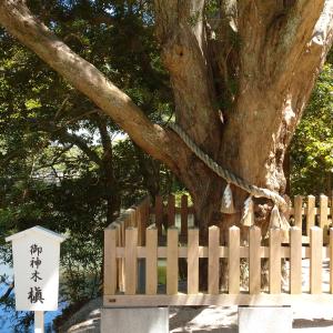 史書から読み解く日本史