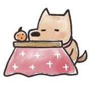 紹介!かわいい犬動画∪・ω・∪