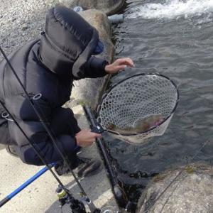 ポテポテの月イチ管釣り 毎日子育て