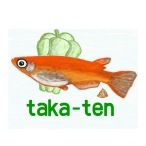 taka-tenのブログ