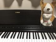 30歳から10年ぶりのピアノ再開