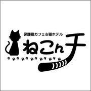 保護猫カフェ&猫ホテル ねこんチさんのプロフィール