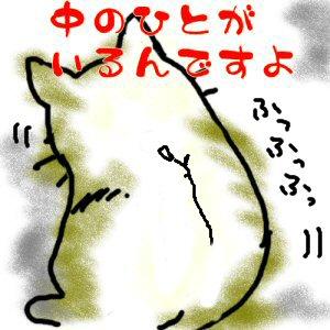 道楽猫さんのプロフィール