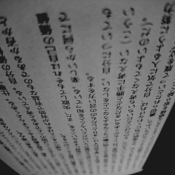 凪目さんのプロフィール