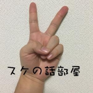 適当なつぶやき〜スケの話部屋〜