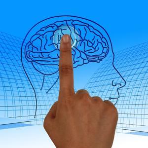 脳卒中レター~治療・予防・リハビリの情報をお届け~
