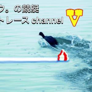 タロウ。の競艇 ボートレースチャンネル V