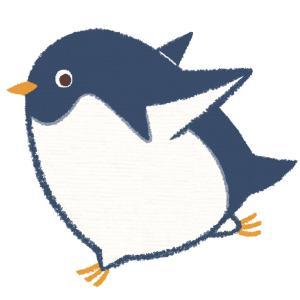 ペンギンさんは空を飛ぶ。