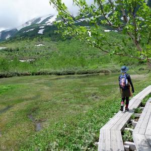 アラサー女子テンのゆるっと自然散歩
