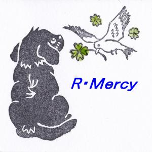 R-Mercyの徒然日記