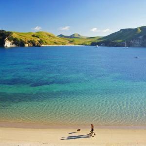 くうねるあそぶ、ニュージーランド