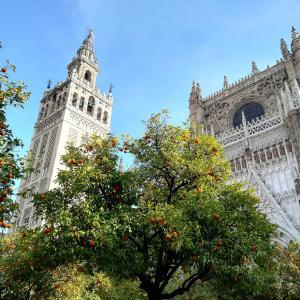 30代でスペイン長期留学に挑戦!
