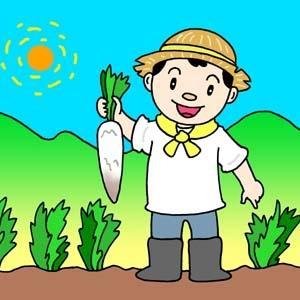 ワイワイ菜園~たんじゅん農法試行中