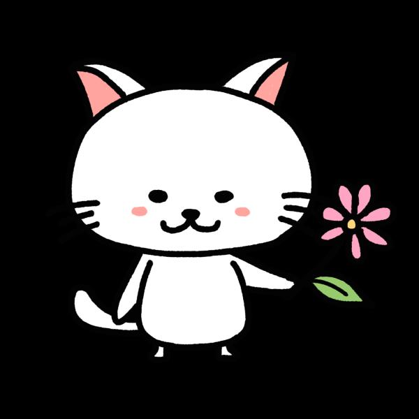 mentsuyuさんのプロフィール