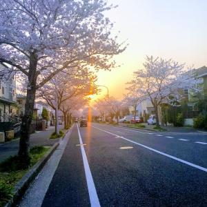 tibafumiのブログ