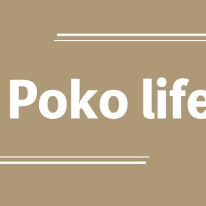 Poko life | ふるさと納税でゼロ円生活