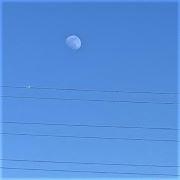 そらに浮かぶ月はしろ。
