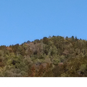 京都♥山里に暮らす
