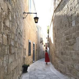 マルタ留学と海外旅行に役立つプチ英会話ブログ
