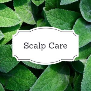 ScalpOdorCare/頭皮の臭いケア