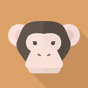 猿マイラーのマイル探しの旅