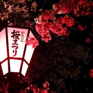 和歌山市を楽しもう