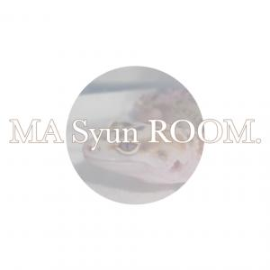MA Syun ROOM.(マッシュンルーム)