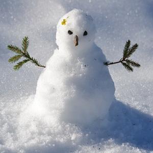 Snowball〜20代からの米国株積立投資〜